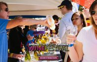 2019 Spring Town Point Park Virginia Wine Festival May 4-5th